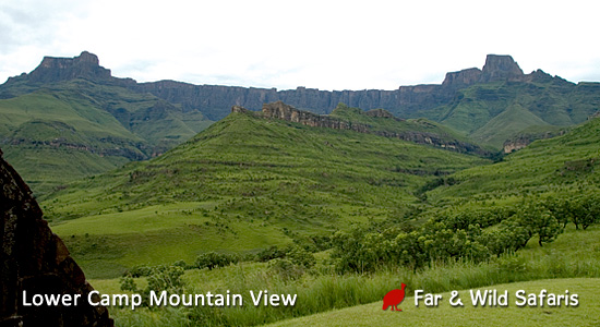Thendele Camp Lower Camp Mountain View Northern Drakensberg Amphitheatre Royal Natal Park  Self-Catering Family Accommodation South Africa